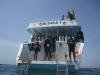 Gulf Divers Boshra Dive Boat Egypt