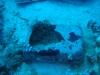 suitcase_underwater